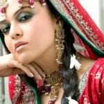 Pakistani Celebrity Maria Wasti