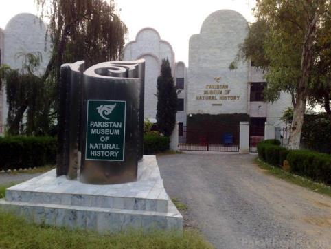 Pakistan Museum of National History Islamabad