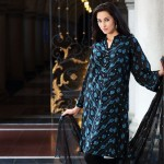 Bareeze Eid Collection 2015 Prices Embroidery