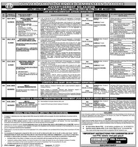 jobs-in-punjab-public-service-commission
